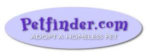 American Lurcher Project | Help Lurchers